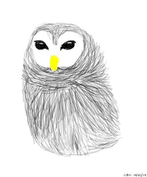 Almost Live Owl